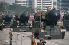 Có thể có cách làm suy yếu tham vọng hạt nhân của Triều Tiên?