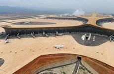 Trung Quốc: Thiết bị bay không người lái gây tắc nghẽn không lưu