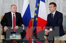 Tổng thống Nga Vladimir Putin bác cáo buộc can thiệp bầu cử Pháp