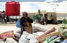 Nga cáo buộc Mỹ không kích tại Syria là vi phạm luật quốc tế