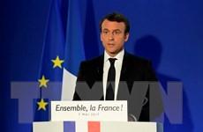 Cử tri Pháp bắt đầu đi bỏ phiếu bầu quốc hội mới