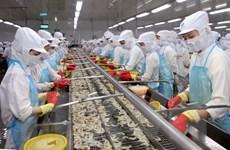 Đồng bảng Anh suy yếu:Xuất khẩu của Việt Nam bị ảnh hưởng thế nào?