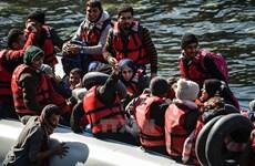 Italy kêu gọi các nước EU mở hải cảng đón nhận người di cư