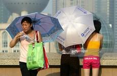 Trung Quốc: Nắng nóng 41 độ C, nhiều người dân Thượng Hải nhập viện