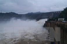Phú Thọ: Cá chết hàng loạt sau khi Thủy điện Hòa Bình xả lũ
