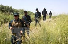 Afghanistan phát hiện 7 thi thể con tin bị phiến quân Taliban bắt cóc