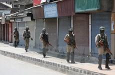 Hàng nghìn binh sỹ Ấn Độ phong tỏa tại khu vực Kashmir