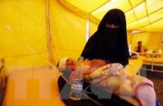 Liên quân tại Yemen ngừng cản trở hoạt động cứu trợ nhân đạo