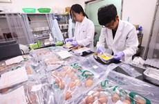 Hàn Quốc phát hiện trứng nhiễm thuốc trừ sâu ở nhiều trang trại
