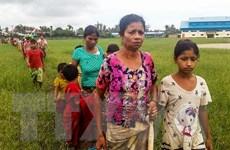 Myanmar: Hàng chục nghìn người sơ tán vì giao tranh tại bang Rakhine