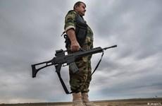 Đức bắt đầu giám sát ngặt nghèo việc sử dụng vũ khí xuất khẩu