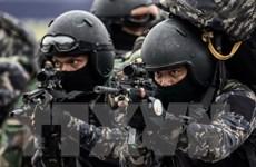 Malaysia bắt giữ các phiến quân nằm trong lực lượng dân phòng