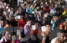 80 ngư dân Ấn Độ đánh cá trái phép được Sri Lanka trả tự do