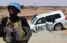 HĐBA trừng phạt các đối tượng cản trở tiến trình hòa bình tại Mali