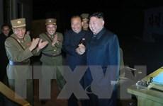 Nhóm MIKTA kêu gọi Triều Tiên tuân thủ nghị quyết của LHQ