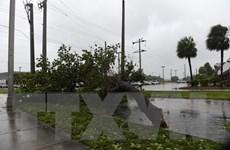 Bão 'tử thần' Irma đổ vào Mỹ đã suy yếu nhưng vẫn đáng lo ngại