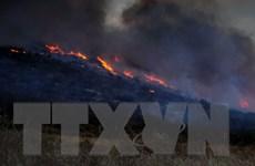 Hỏa hoạn đứng đầu các thảm họa gây thiệt hại nặng cho Mexico