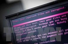 Europol kêu gọi tăng cường hành động chống tội phạm mạng