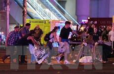 Vụ xả súng ở Las Vegas: Gia đình nghi can có tiền sử tội phạm