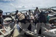 UNHCR báo động về việc người Hồi giáo Rohingya ồ ạt sang Bangladesh