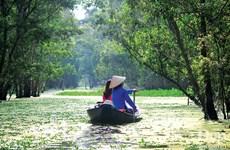 Đắm say với thiên nhiên và đặc sản An Giang mùa nước nổi