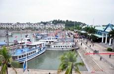 Đình chỉ tàu du lịch và thuyền trưởng vi phạm trên vịnh Hạ Long