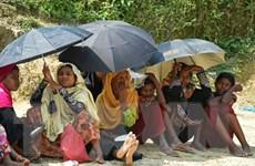 Bangladesh, Myanmar bắt đầu đàm phán hồi hương người Rohingya