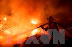 Mỹ: Nhiều đám cháy tại bang Nam California đã được khống chế
