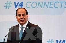 Ai Cập dùng tối đa vũ lực để đẩy lùi khủng bố trên Bán đảo Sinai