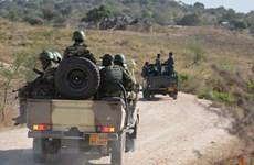 Cameroon: Liên tiếp các vụ tấn công nghi do Boko Haram thực hiện