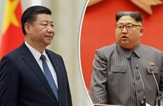 Hàn Quốc bắt giữ tàu Hong Kong chuyển dầu cho Triều Tiên