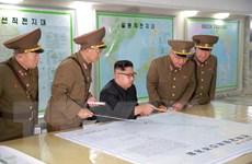 """Pyeongchang - """"chất xúc tác"""" gỡ bế tắc căng thẳng bán đảo Triều Tiên?"""