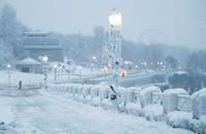 'Bom bão tuyết' chuẩn bị đổ bộ, Canada ban bố cảnh báo đặc biệt