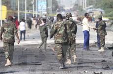 Đức ngừng huấn luyện binh sỹ ở Somalia do ít tiến bộ