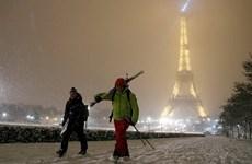 Tháp Eiffel của Pháp buộc phải đóng cửa vì tuyết rơi quá dày