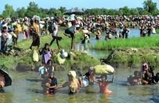 Anh hối thúc Myanmar hành động để giải quyết cuộc khủng hoảng Rohingya