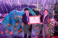 Nghệ thuật tạo hoa văn của người Mông hoa Điện Biên là di sản quốc gia