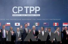 Giải pháp then chốt để Việt Nam tận dụng tốt cơ hội từ CPTPP