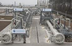 """Giới chức Đức """"bật đèn xanh"""" cho dự án Dòng chảy phương Bắc 2"""