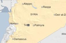 Pháp khẳng định không tấn công căn cứ không quân Syria