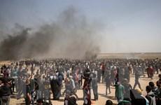 Hamas kêu gọi tiến hành thêm các cuộc biểu tình chống Israel