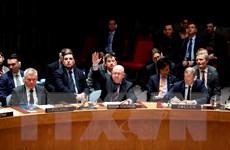 HĐBA không thể thông qua dự thảo nghị quyết thứ 3 về Syria