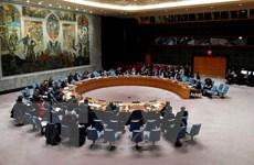 HĐBA không thông qua 2 dự thảo nghị quyết về Syria của Mỹ và Nga