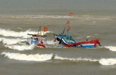 Cứu sống 8 thuyền viên trên tàu cá bị nạn tại ngư trường Hoàng Sa