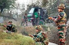 Malaysia và Ấn Độ tập trận chung chống khủng bố trong rừng