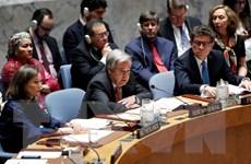 LHQ và EU kêu gọi đàm phán chính trị chấm dứt xung đột ở Syria
