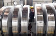 Trung Quốc hợp tác với WTO bảo vệ hệ thống thương mại đa phương