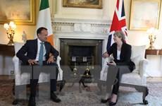 Ireland lo ngại nguy cơ nếu không đạt được thỏa thuận trước tháng 10
