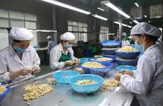 Việt Nam đặt mục tiêu đạt kim ngạch xuất khẩu nhân điều 10,5 tỷ USD