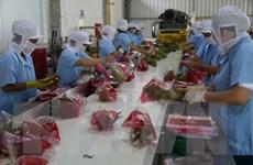 Xuất khẩu rau quả Việt Nam và mục tiêu cán mốc 10 tỷ USD